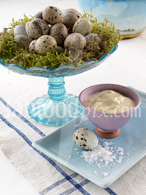 quails eggs photo