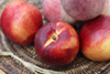 nectarines photo